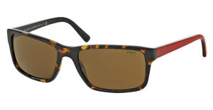 Polo PH4076 537473 BROWNDARK TORTOISE