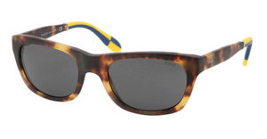 Polo PH4077 535187 GRAYNEWJERRY TORTOISE