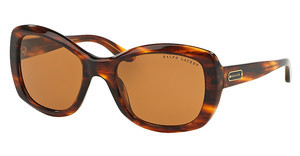 Ralph Lauren RL8132 500773 BROWNSTRIPPED BROWN HAVANA