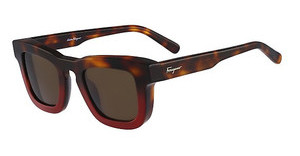 Salvatore Ferragamo SF771S 207 HAVANA RED